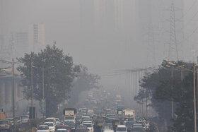 چرا سیاست گذار نمیتواند آلودگی هوا را رفع کند؟