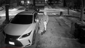 """نحوه ثبت سرقت خودرو در اپلیکشین """"پلیس من"""" بلافاصله بعد از سرقت"""
